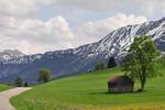 Frühlingserwachen im Tannheimer Tal.