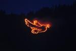 """""""Die Friedenstaube"""" - Bergfeuer in Schattwald 2009"""